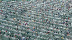 '화천 산천어축제'가 막을