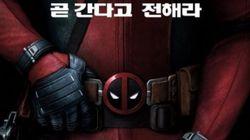 마블 대표 귀염둥이 '데드풀'의 한국