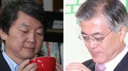 야권후보 지지도 : 안철수 44% vs 문재인 33%