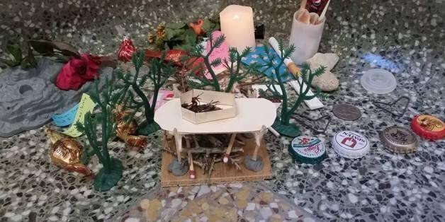 대학생들이 바퀴벌레의 장례식을 치러줬다(사진