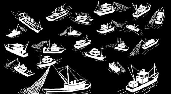 바다에서 일어나는 공멸의