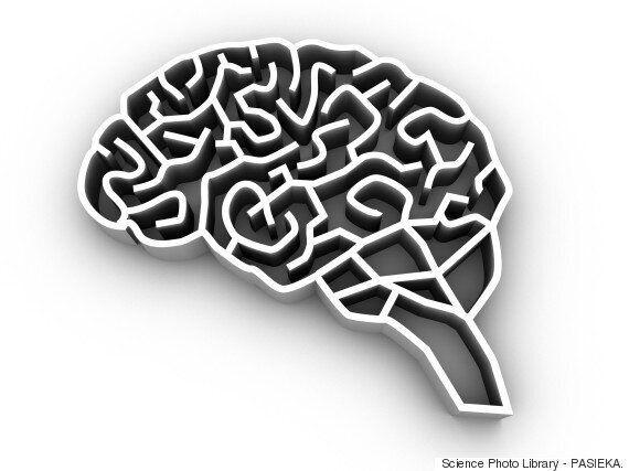 한국 연구진이 물에 타먹는 알츠하이머 신약 물질을