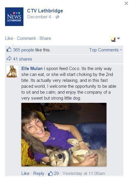 이 개는 혼자 밥을 먹지 못해 입양되지 못한다, 하지만 이미 같은 병을 가진 많은 개들이 반려가정에서 행복하게 살아가고