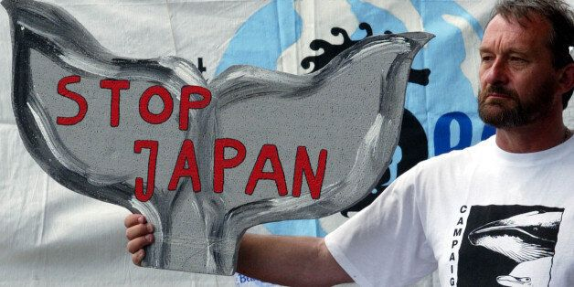 Vic Machin aus Grossbritanien haelt ein Protestplakat in Form einer Walflosse waehrend einer Mahnwache...