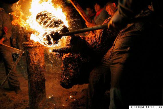 살아있는 소에게 '불'을 붙이는 스페인의