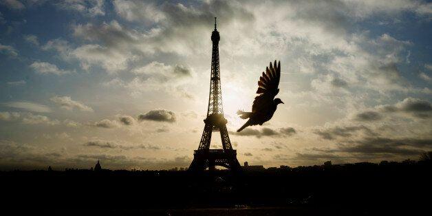 에펠탑과 루브르가 다시 문을