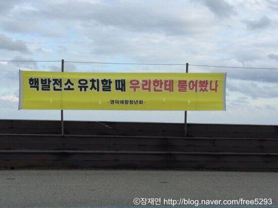영덕군 주민투표, 왜곡을 딛고 승리의 역사를