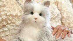 하스브로가 개발한 노인을 위한 고양이 로봇(사진,