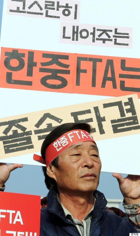 국회비준 앞둔 한중FTA 핵심만