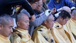 국정화 반대 참여 교사 2만여, 고발 및 징계