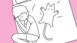 고양이를 키우는 사람만 아는 수면 자세