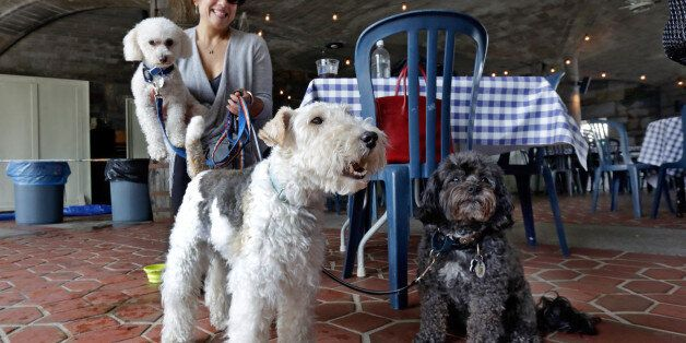 FILE - In this May 19, 2015 file photo, Michelle Vargas, with, from left, 8-year-old Bichon Frise-Poodle