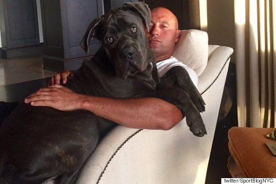 개를 무서워했던 전 양키스 선수 데릭 지터의 놀라운