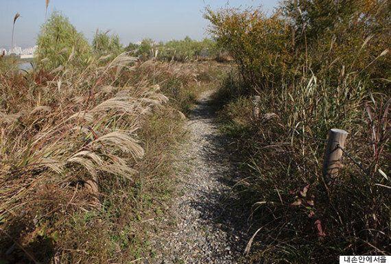 한강에 온 가을, 강변 산책길 베스트