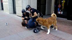 경찰에게 체포되는 주인을 구하려고 한
