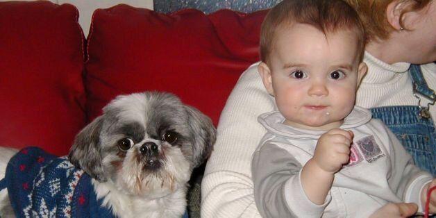 Baby & dog, staring at