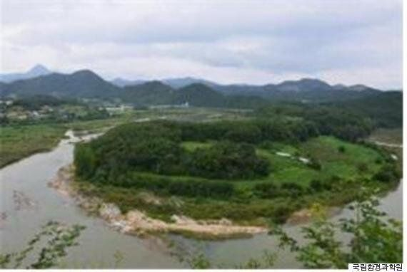 영월 '한반도습지' 보호지역 지정 3년만에 멸종위기종 3배