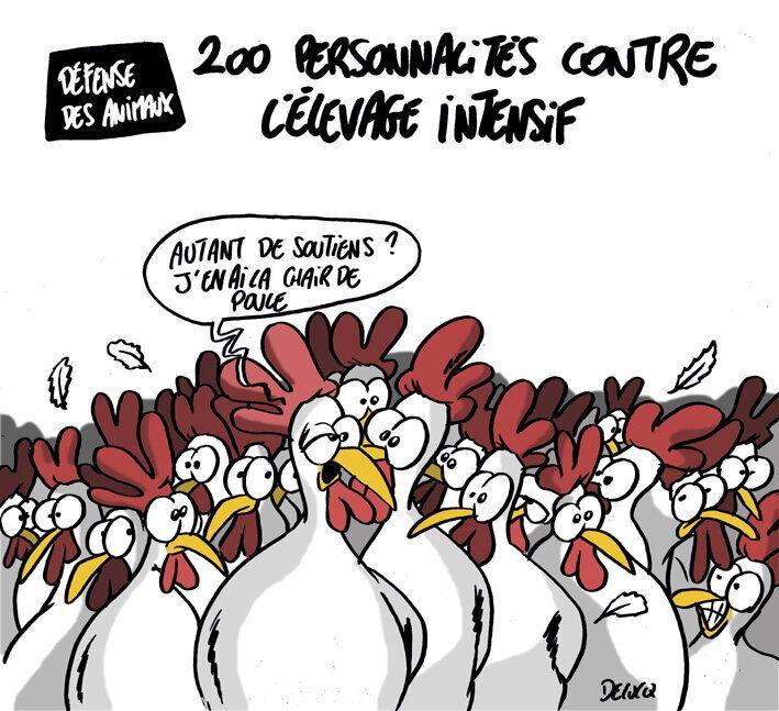 Tous unis contre l'élevage intensif.