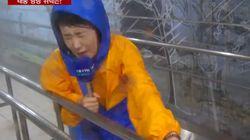 태풍 링링의 바람을 인공으로 체험해본 기자는