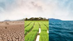 Cambiamento climatico: adattarsi, mitigare o ignorare? (di A.