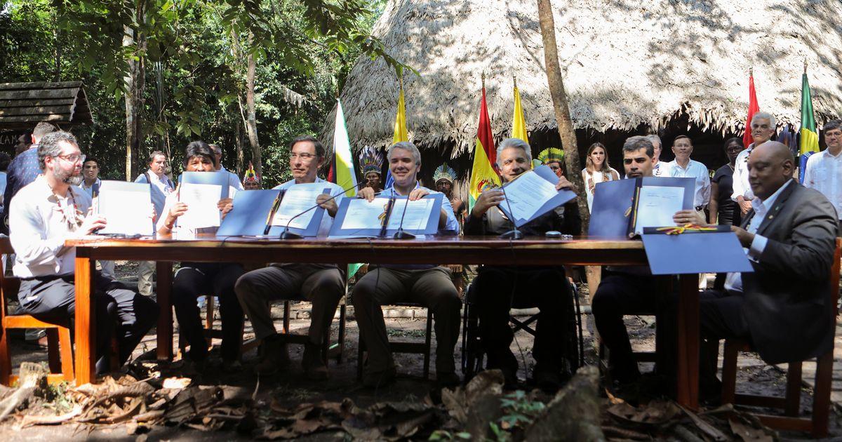 Países buscam acordo para proteger Amazônia em cúpula na Colômbia