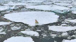 Changements climatiques: une source d'«écoanxiété» chez les