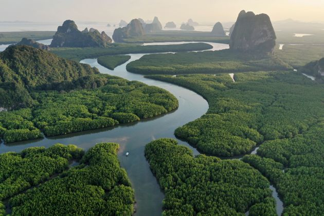 Aerial view of Phang nga bay in sunset. You can see mountain and rainforest,