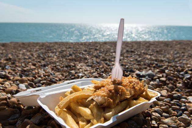 Does Your Fish And Chips Contain Shark Meat? – Plus How To Pick More Sustainable Seafood