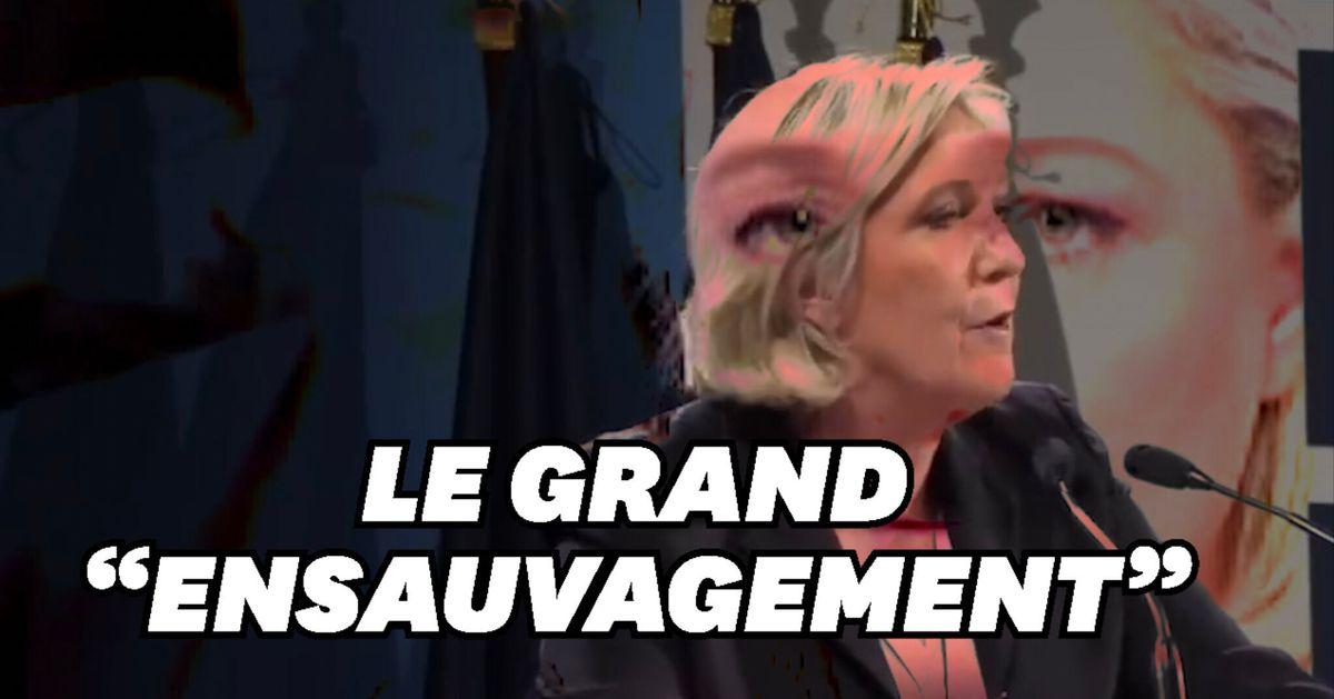 """Marine Le Pen agite encore la peur de """"l'ensauvagement""""...en vue ..."""