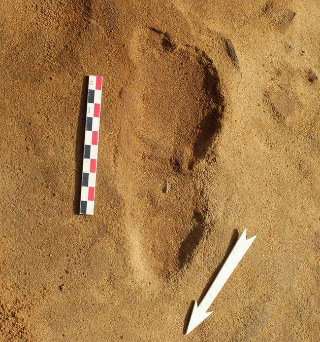Trace d'empreintes de Néandertalien retrouvée à Rozel en
