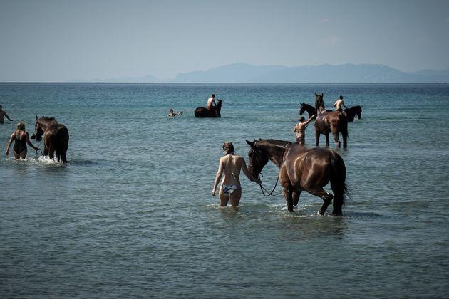 Και με άλογο στην παραλία...