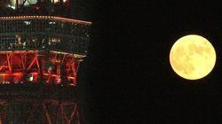 9月13日は中秋の名月、14日は満月。お月見のお天気は?