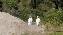 Hallan 119 bolsas con cadáveres desmembrados en una fosa en un área del cartel más peligroso de