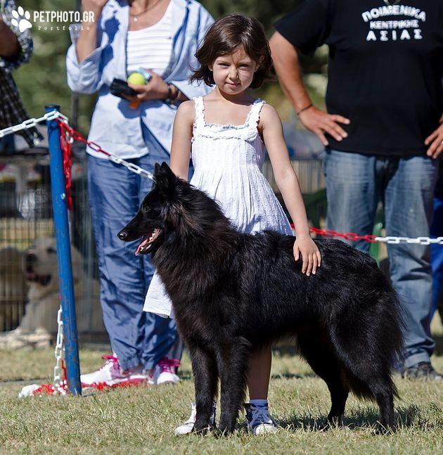 Κινδυνεύουν τα παιδιά από τους σκύλους της οικογένειας; Εκπαιδευτής σκύλων δίνει την
