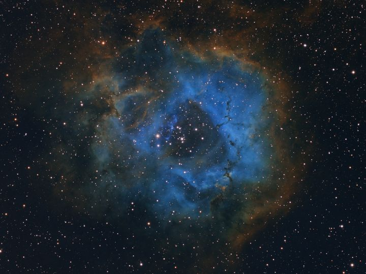 Stellar Flower, by Davy van der Hoeven.<br /><br />Once the 11-year-old photographer decided to capture a deep sky image, he started researching online for nebulae and came across the magnificent Rosette Nebula. With the help of his father he built the equipment and together, over three nights in November, captured images images of the Rosette Nebula using different filters.&nbsp;