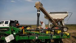 China To Lift Punitive Tariffs On U.S. Soybeans,