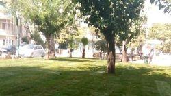 Ομορφαίνει η Φωκίωνος Νέγρη με συντονισμένη παρέμβαση του Δήμου