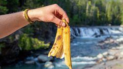 Jeter votre peau de banane dans la nature peut avoir des effets négatifs