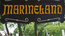 Marineland Charged With 5 Counts Of Animal