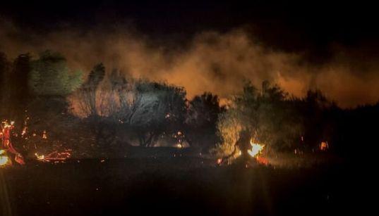 Ολονύχτια μάχη με τις φλόγες στη Ζάκυνθο - Ανεξέλεγκτη μαίνεται η