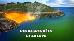 L'improbable conséquence de l'éruption du Kīlauea à