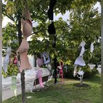 Bra Protest Grows In Ottawa After Harassment Claims Against