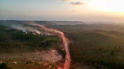 Esta é a Amazônia 'sem lei': Desmatamento, assassinatos impunes e sabotagem do