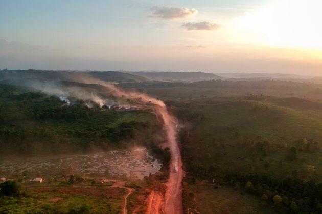 Desmatamento, assassinatos e sabotagem do governo: ONG denuncia impunidade na Amazônia 'sem