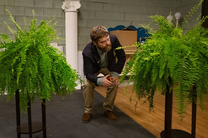 "Zach Galifianakis in ""Between Two Ferns: The Movie"""