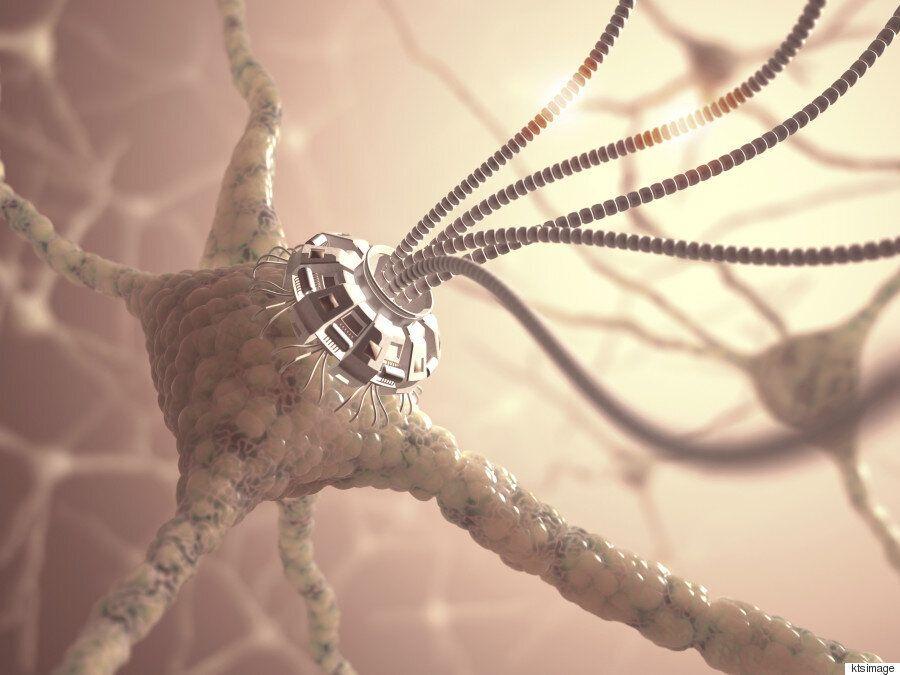 레이 커즈와일: 2030년대에는 뇌 속의 나노봇이 우리를 '신과 비슷한 존재'로 만들
