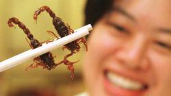 우리가 벌레를 먹어야 하는 이유