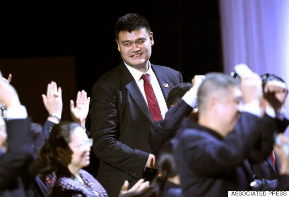 중국의 농구 영웅 야오밍이 살린 상어는 몇 마리나