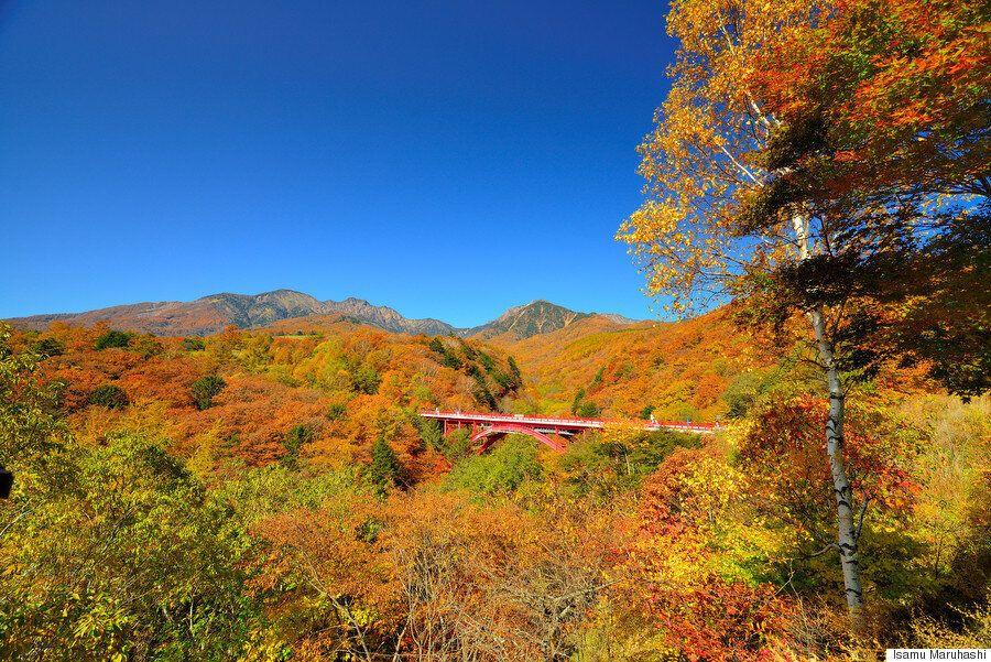 이것이 일본 야쓰가타케 산의