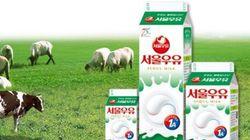 '업계 1위' 우유 회사는 직원들에게 월급 대신 우유와 치즈를